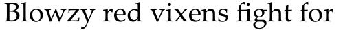 Palatino Linotype Roman sample