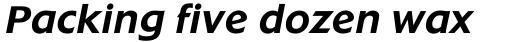 Extension RR Medium Italic sample
