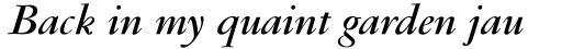 Garamond RR Bold Italic sample