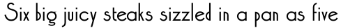 Xctasy Sans RR Medium Alternates sample