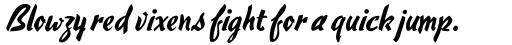 Hauser Script RR sample