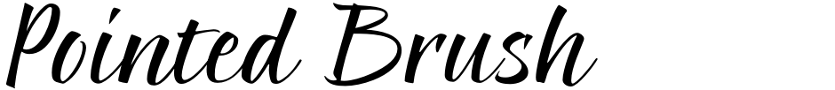 Click to view  Pointed Brush font, character set and sample text
