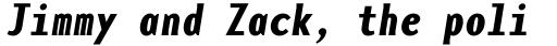 Base Monospace Narrow Bold Italic sample