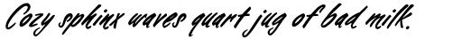 Falcon Brushscript Bold sample