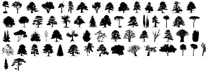 Subikto Tree™ Font Sample