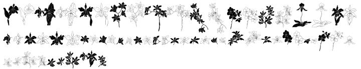 Orchids™ Font Sample