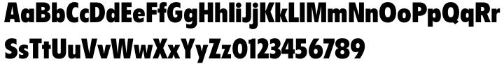 Flyer™ Font Sample
