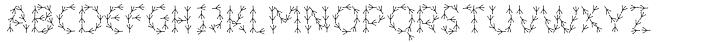 ForTheBirds™ Font Sample
