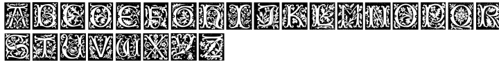 Fraticelli Font Sample
