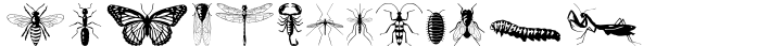 P22 Insectile™ Font Sample