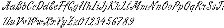 Slutsker Script Font Sample