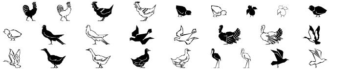Polytype Birds Font Sample