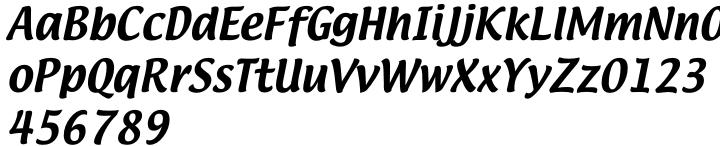 Lucida Big Casual Font Sample