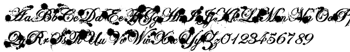 Eddy Font Sample