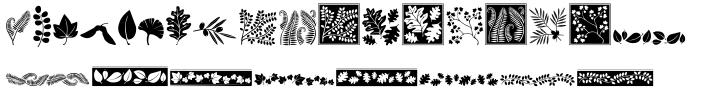 DB Foliage Font Sample