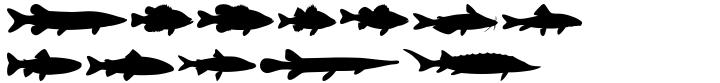 Fish Fresh Font Sample