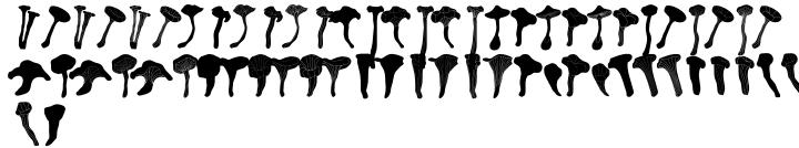 FT Funghi™ Font Sample