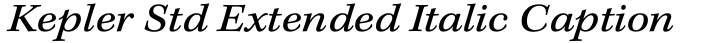 Kepler Std Extended Italic Caption