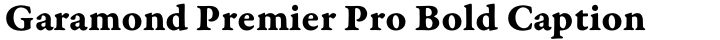 Garamond Premier Pro Bold Caption