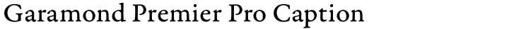 Garamond Premier Pro Caption