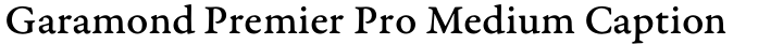 Garamond Premier Pro Medium Caption