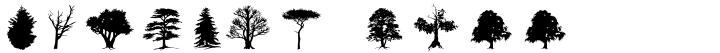 Subikto_Tree