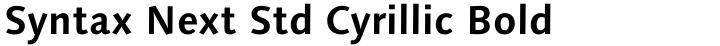 Syntax Next Std Cyrillic Bold