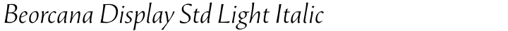 Beorcana Display Std Light Italic